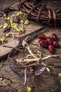 herbal medicine FYI00660690