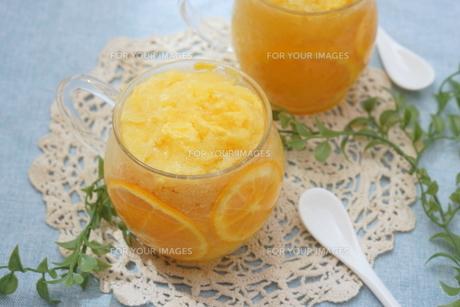 オレンジシャーベット FYI00665069