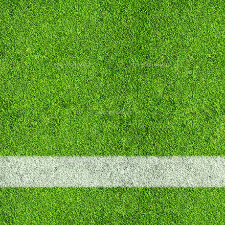 grass_fields FYI00668702