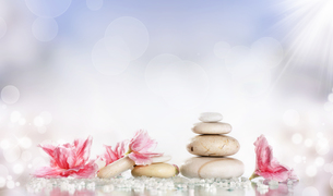 wellness_beauty FYI00672056