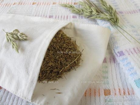 hayflowers FYI00679131