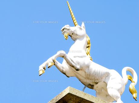unicorn FYI00684483