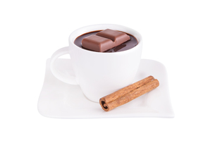 hot chocolate with cinnamon FYI00698320