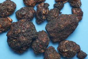 myrrha,moyao,myrrh gum,myhrrebaumの素材 [FYI00709898]