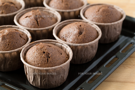 Muffin with chocolate sauce FYI00757486