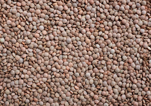Brown lentils background FYI00772308