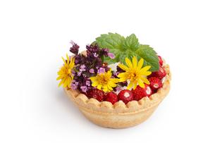 Dessert with wild berries FYI00791372