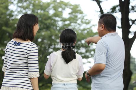 親子親子3人の後ろ姿 FYI00795588