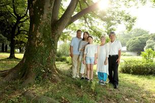 3世代家族と木 FYI00795592