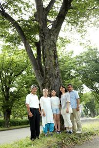 大きな木の前で FYI00795601