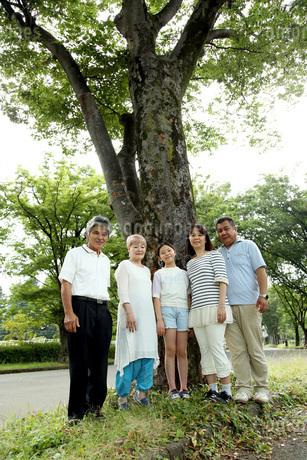 木の前で家族写真 FYI00795609