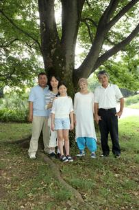 大きな木の下で FYI00795613