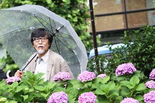 紫陽花に隠れて人間観察するおじいちゃん FYI00795982