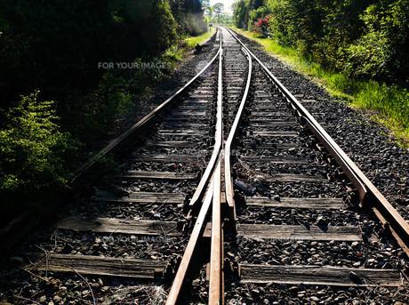 rail_traffic FYI00806395