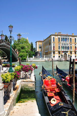 palazzi on the grand canal in venice FYI00811677