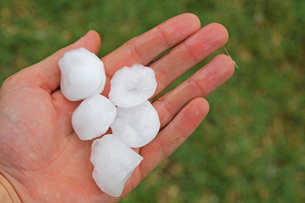 hail FYI00813045