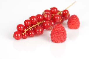 raspberries currants FYI00822552