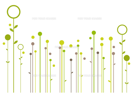 plants_flowers FYI00827798