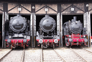 roundhouse with steam locomotives FYI00841060
