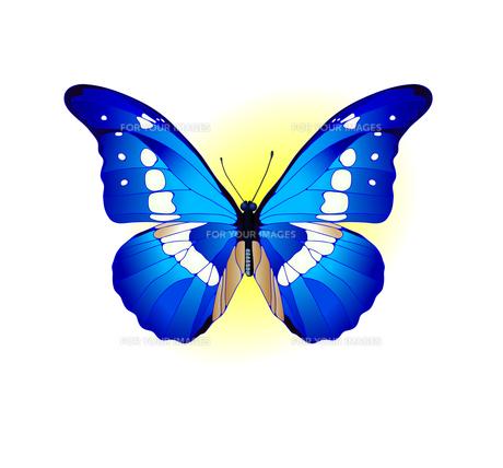 blue FYI00850161