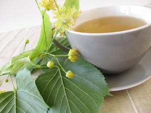 lime blossom tea FYI00879207