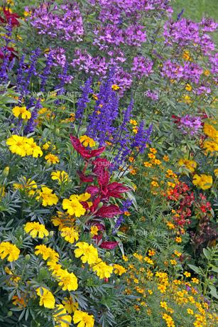 parkways_gardens FYI00883315