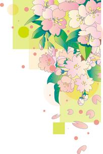 桜の背景 FYI00884716