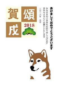 柴犬の白背景のイラスト年賀状テンプレート戌年2018 FYI00885703