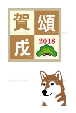 柴犬の白背景のイラスト年賀状テンプレート戌年2018 FYI00885704