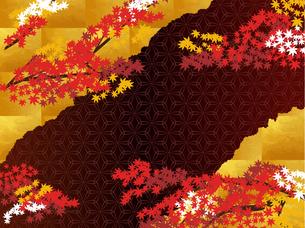 秋の和柄と金の背景 FYI00885928