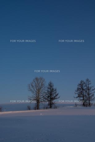 晴れた夕暮れの冬の丘 FYI00886316