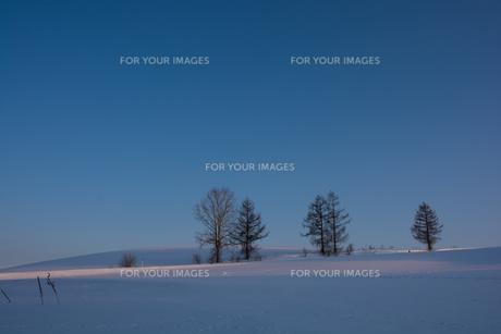 晴れた夕暮れの冬の丘 FYI00886317