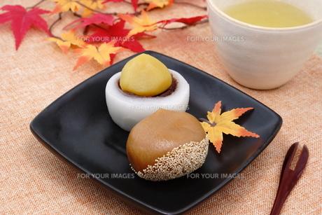 栗の和菓子 FYI00886471