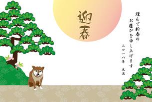 柴犬と松の木と日の出の和風年賀状テンプレート 戌年 FYI00886909