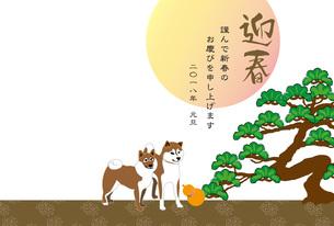 柴犬とひょうたんと松の木と日の出の和風年賀状テンプレート 戌年 FYI00886911