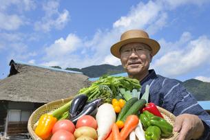 田舎暮らしで野菜を収穫しいてる笑顔のシニア FYI00887062