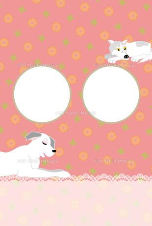 白い犬とピンクの花柄の写真フレームのはがきテンプレート 戌年 FYI00888204
