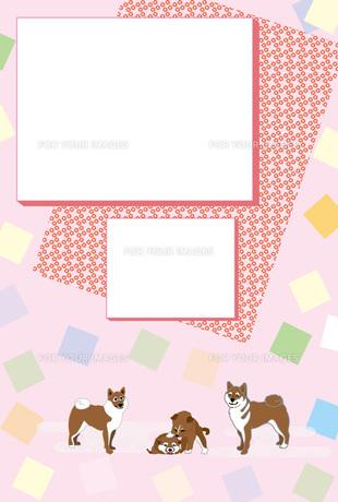 柴犬の家族の和風写真フレームのピンクのはがきテンプレート FYI00888209