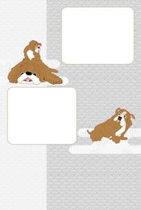 三びきの犬のシンプルな写真フレームのはがきテンプレート FYI00888210