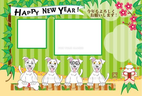 ポップな犬と鏡餅の写真フレームの年賀状テンプレート FYI00888549