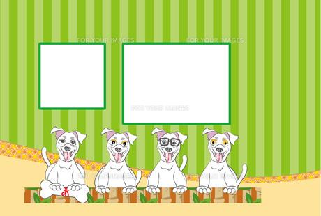 めがねをかけたポップな犬のストライプの写真フレームの緑色のはがきテンプレート FYI00888571