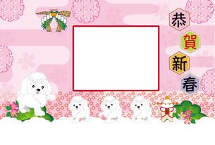 かわいい犬の家族と梅の花の写真フレームの年賀状テンプレート FYI00888575