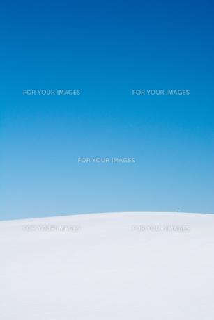 真っ青な青空と真っ白な雪原 FYI00888608
