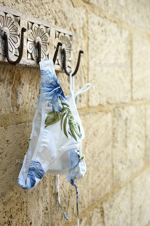 Bikini Hanging on Hookの素材 [FYI00904970]
