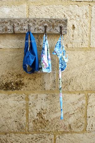 Bikini and Swimming Trunks on Hookの素材 [FYI00904976]