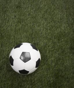 Soccer Ball on Grass FYI00905332
