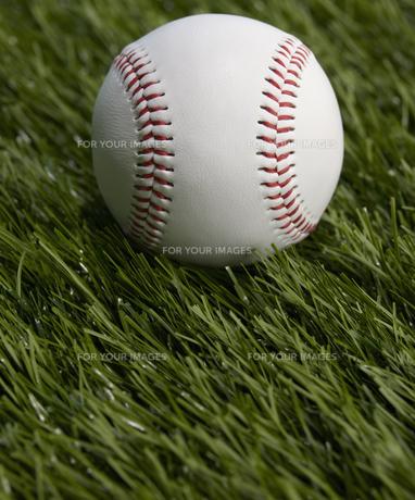 Single Baseball FYI00905364