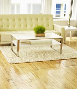 Coffee Table and Sofa FYI00906162