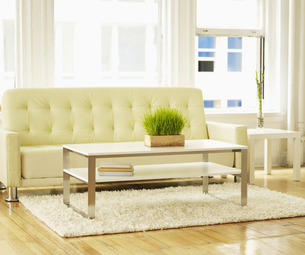 Coffee Table and Sofa FYI00906195