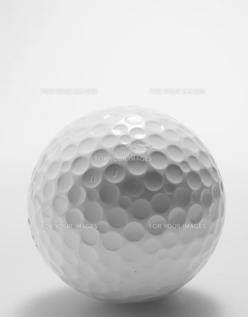Single Golf Ball FYI00907169